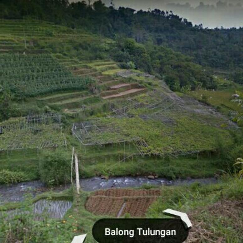 tanah kebun ciwidey  gambung soreang Bandung, murah, cck villa