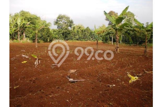 tanah botolingga dijual murah 17994672