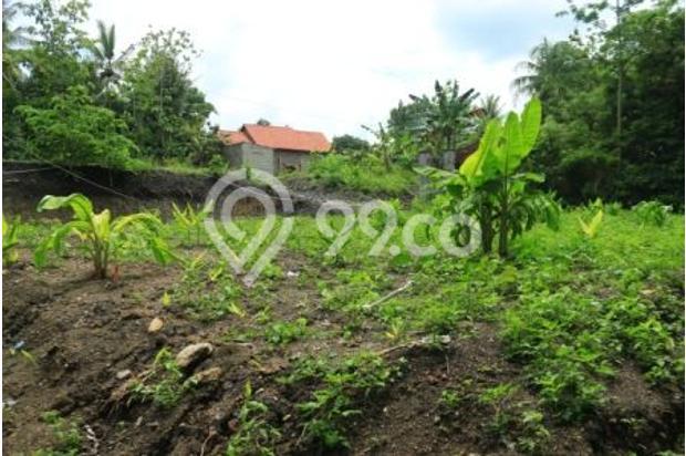Rumah 36/81 Harga Miring Di Kawasan Berkembang Jogja Selatan 14372102
