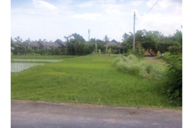 Rp11,4mily Tanah Dijual