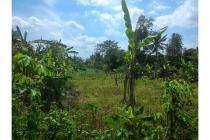 Jual Tanah di Sentolo Kulonprogo, Beli Tanah  Dekat Sat Brimob