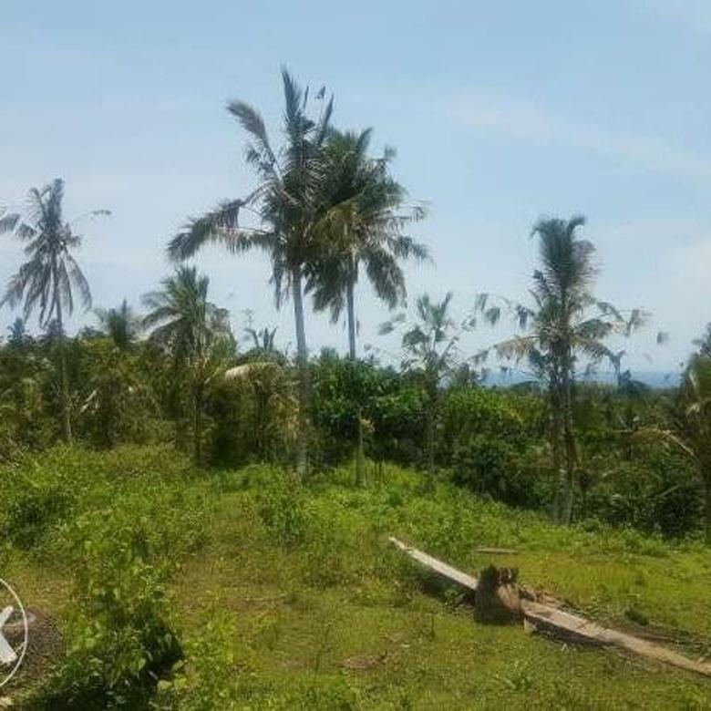 Investasi Murah Balian dan Soka Beach