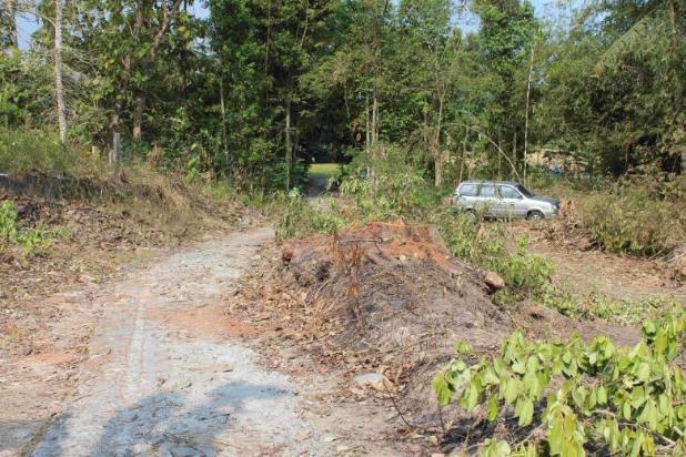 Beli Tanah Di Dekat Kampus Baru : Investasi Manis 12899247
