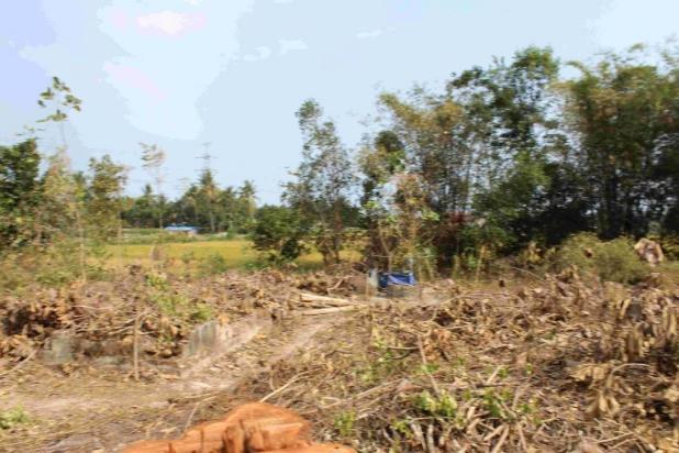 Beli Tanah Di Dekat Kampus Baru : Investasi Manis 12899250