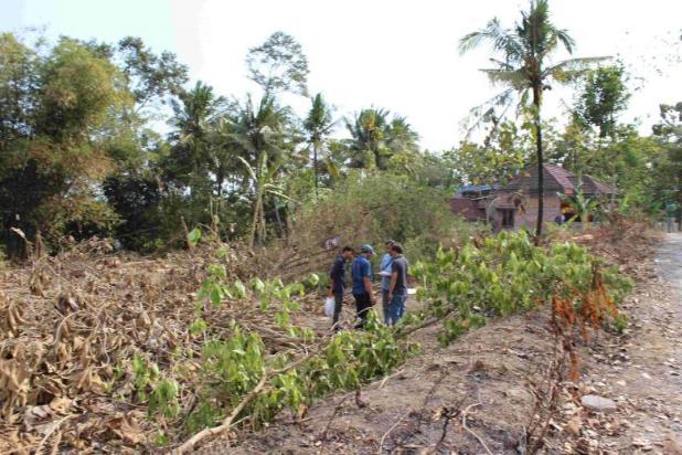 Beli Tanah Di Dekat Kampus Baru : Investasi Manis 12899254