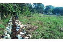 DISEWAKAN: tanah dekat Taman Buah Mekarsari