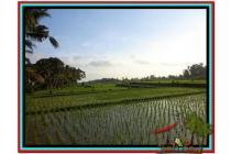 Strategis dan Potensial 2.000 m2 View sawah dan kebun di Tabanan TJTB151