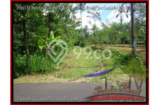 Exotic, 2.200  m2 View Kebun alami 2178126