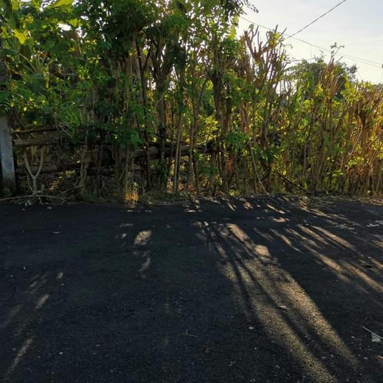 Tanah kawasan pantai Pecatu, Kuta Badung Bali