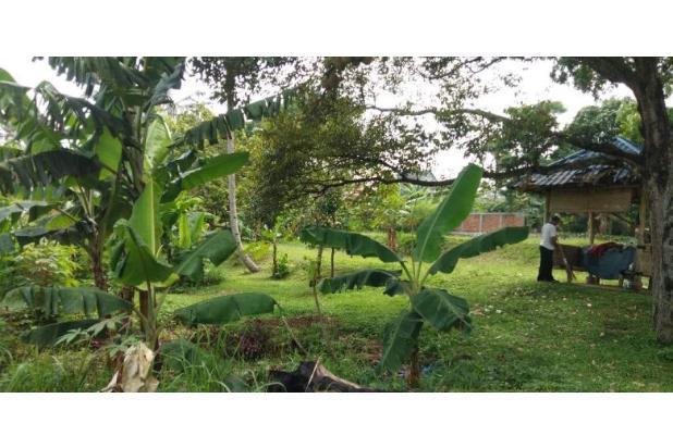 Rp22,1mily Tanah Dijual
