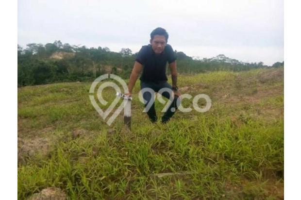 Tanah Kavling Murah Area Samarinda 17342127