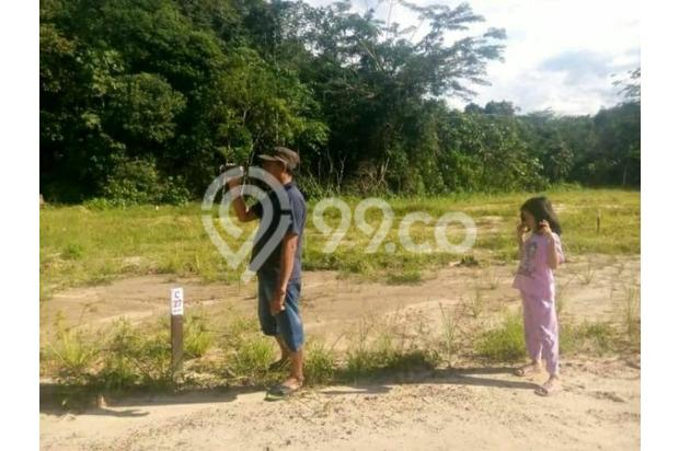 Tanah Kavling Murah Area Samarinda 17342130