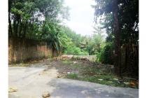 Dijual Tanah Murah Jogja, Jual Tanah di Bangunjiwo Bantul Dekat Kampus PGRI