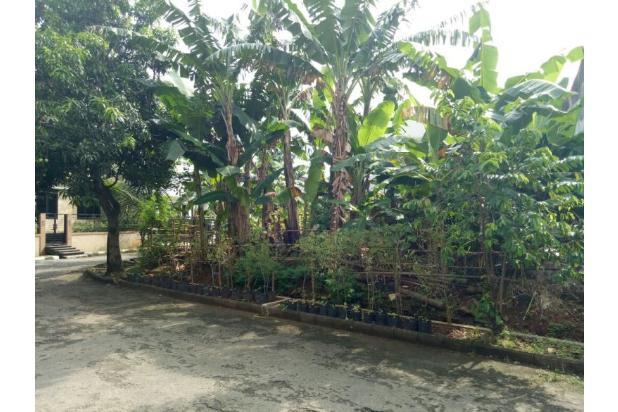 Jual Tanah Kavling Camar Bintaro 13424965