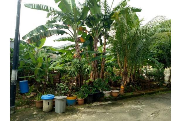 Jual Tanah Kavling Camar Bintaro 13424976