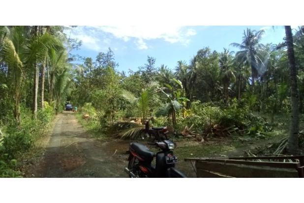 Kaveling Tanah Tayuban: Bangun Rumah Lebih Murah 150 Jt 17699470