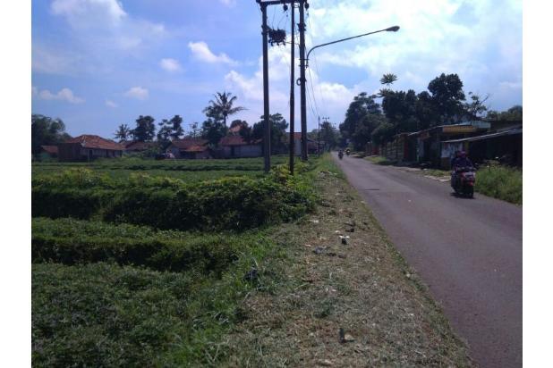 Tanah jl.Raya Gunung Puntang Strategis  di Bandung Selatan 14393931