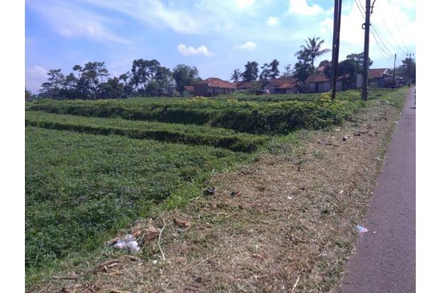 Tanah jl.Raya Gunung Puntang Strategis  di Bandung Selatan 14393934