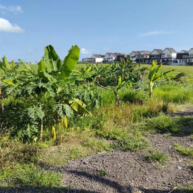 Tanah Istimewa View Sawah dan Laut Lokasi Mengening Cemagi
