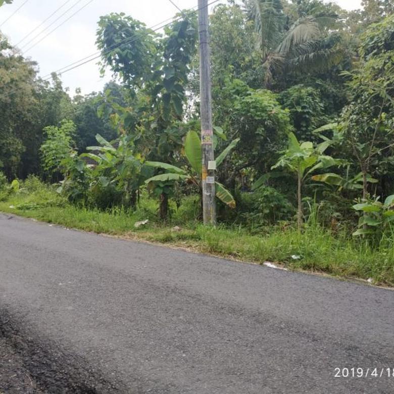 Tanah 1,4 Hektar di Sedayu Bantul Akses Pinggir Jalan Aspal