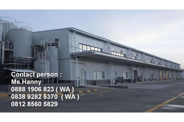 Rp165mily Pabrik Dijual