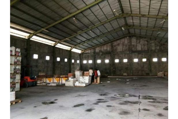 gudang 1500 m2 cargo denpasar dkt ubung muding mahendradata buluh indah
