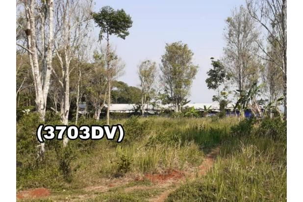 Rp4,39mily Tanah Dijual
