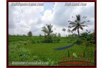 Investasi Prospektif,  35.000 m2 di  Ubud Payangan