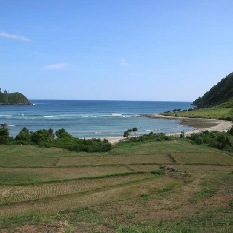 Tanah-West Lombok Regency-3