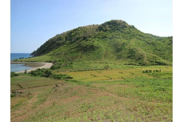 Rp24,1mily Tanah Dijual