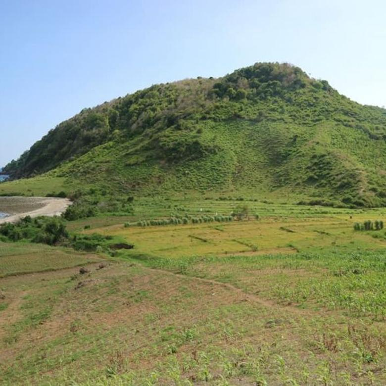 Tanah-West Lombok Regency-4