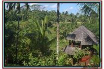 Spesial sangat Cantik Tanah 2.500 m2 di Ubud Tegalalang E496