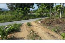 Tanah 2,4 Hektare Lampung