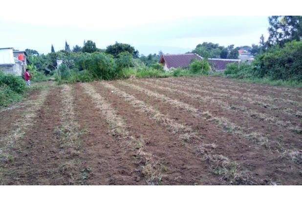 Rp4,35mily Tanah Dijual