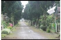 Vila-Jakarta Timur-2