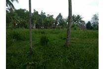 Tanah Daerah Tasikmalaya Kec Ciawi Ds PakemitanKidul 190bata/2660