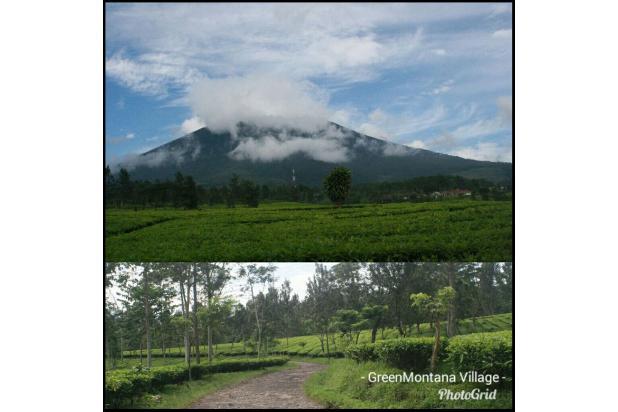 Investasi Kavling Villa Puncak Cipanas, Green Montana Village SHM 16225146