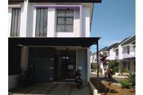 Dijual Edelwaisse Cisaranten Kulon, Arcamanik Bandung