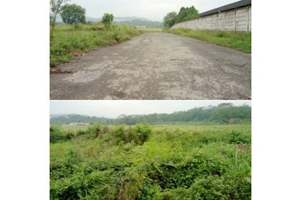 Rp810mily Tanah Dijual