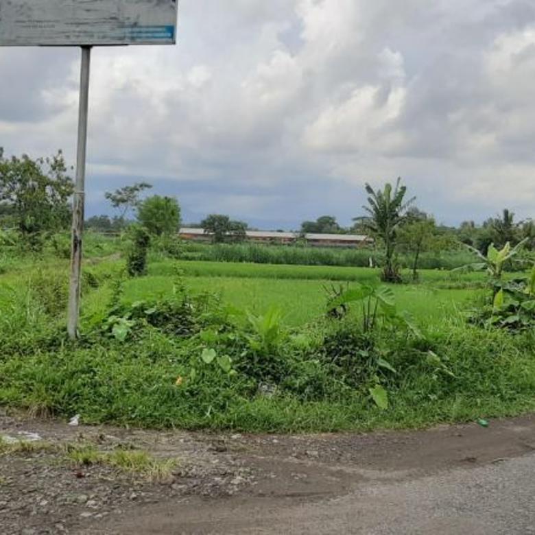 Tanah 280 meter di jalan palagan km 13 sleman yogyakarta