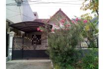 Dijual cepat rumah besar dan luas Cluster Mahoni, Taman Royal 1