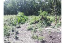Tanah Pekarangan 225 Meter Murah Karang Anyar