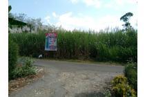 Tanah kavling Murah Malang Kabupaten