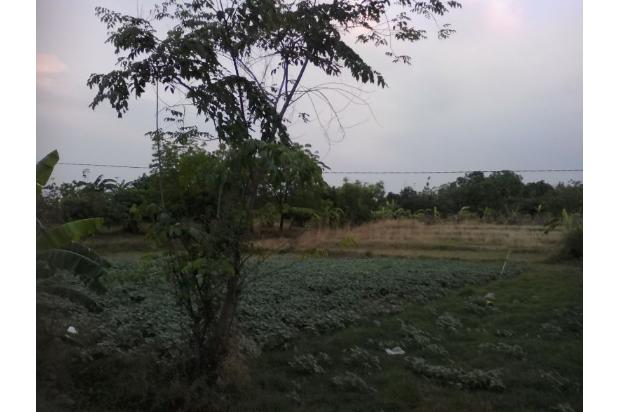 Tanah Strategis Bangun Kios  Dekat Interchange Tol Cikedung . 13426084