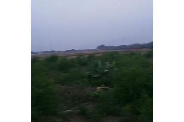 Rp27,2mily Tanah Dijual