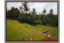 Tanah sangat Cantik Murah 2.800 m2 Ubud Tampak Siring YUB521
