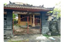 Rumah asri di Gang Wani No 4, Sambangan. Singaraja.