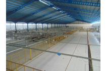 Pabrik-Subang-18