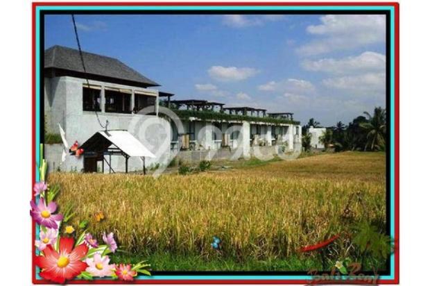 Investasi Properti Strategis 1.500 m2  View Sawah di Sentral Ubud TJUB508 4291901