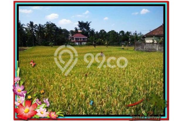 Investasi Properti Strategis 1.500 m2  View Sawah di Sentral Ubud TJUB508 4291904